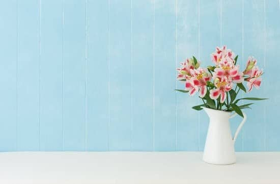 there are specific steps you can take to help your flower last longer, while also looking more bright and beautiful than ever before! Read on to learn the truth about how to keep cut flowers fresh.