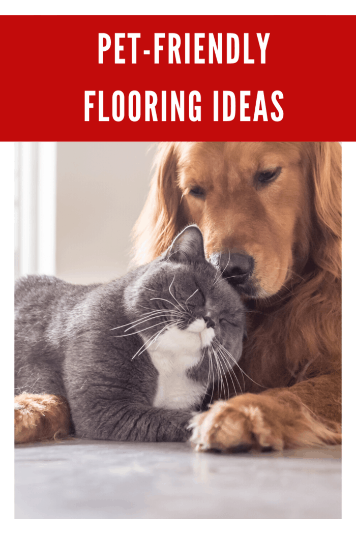 pet-friendly flooring ideas to make your life stress free.