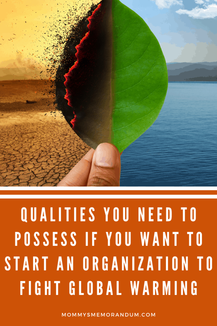 Qualities You Need to Possess if You Want to Start an Organization to Fight Global Warming