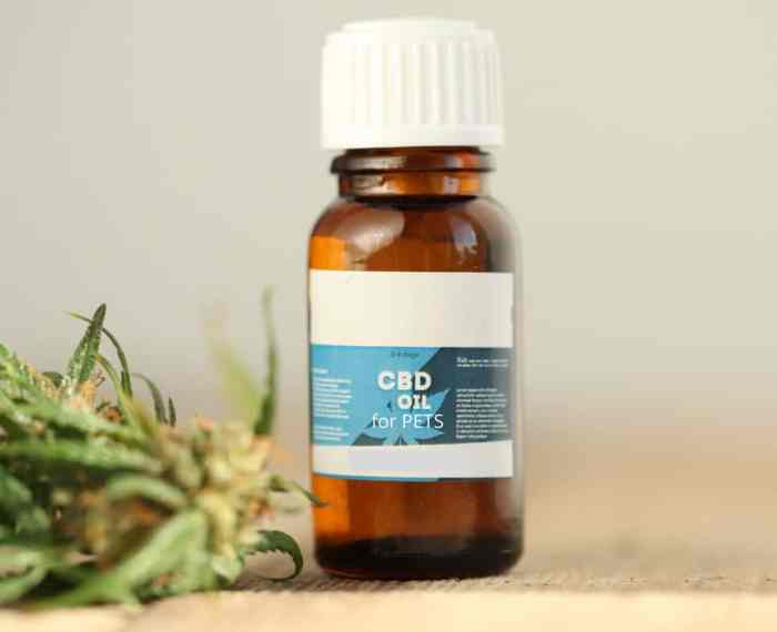 Cannabidiol, better known as CBD, is one of the active compounds in the cannabis plant.