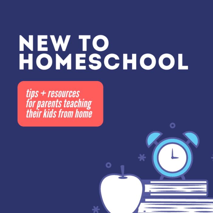 New to homeschool