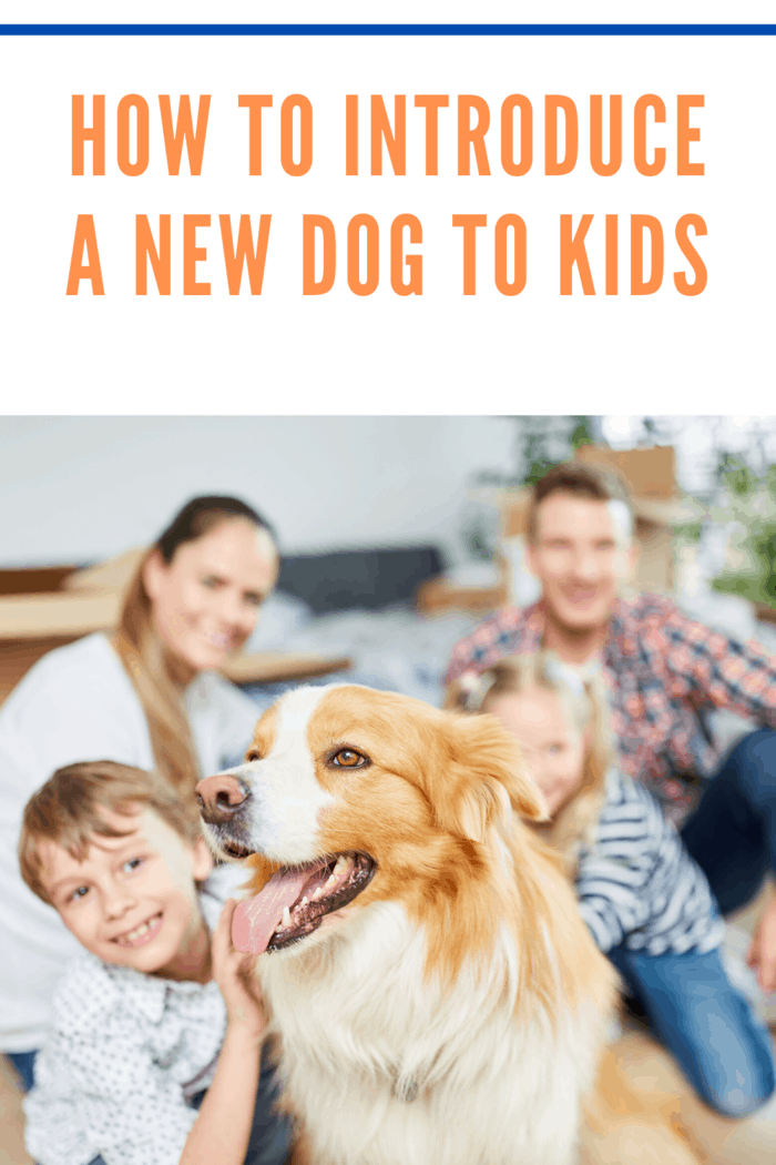 family introducing dog to children