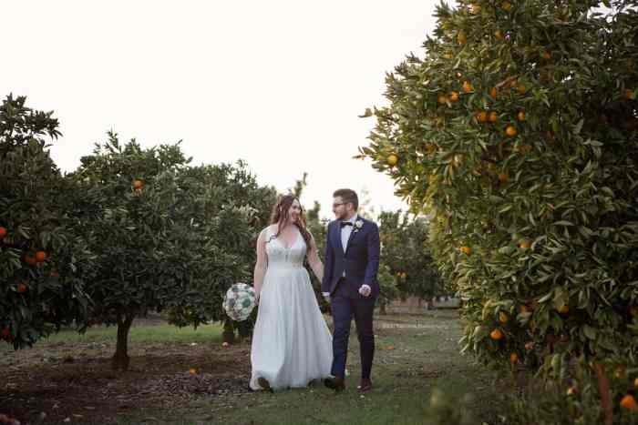 picture of the newly married couple, walking hand in hand through the orange grove as husband and wife.