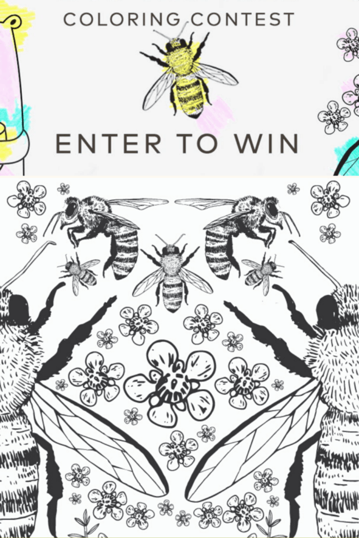 Comvita Invites You to BEE Creative with this Coloring
