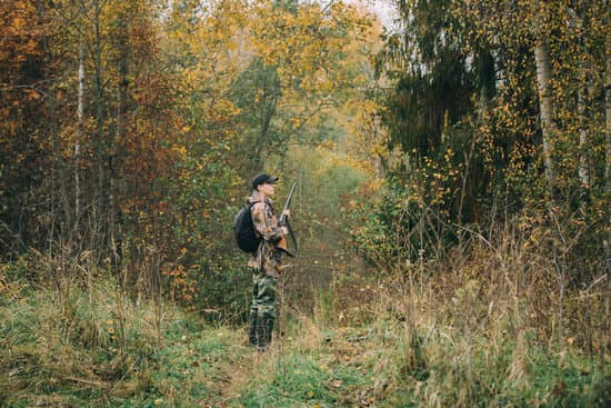 Male hunter in the woods wearing hunting clothing