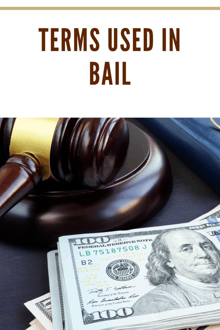 Litigation finance. Gavel and dollar banknotes. Bail bonds.