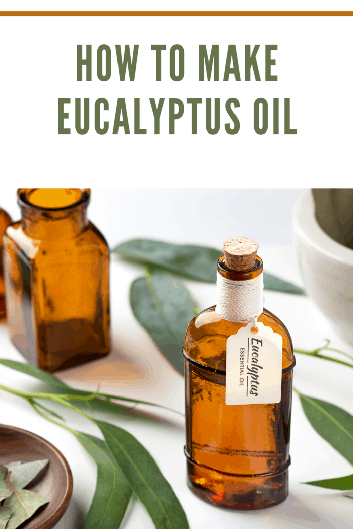 homemade eucalyptus esential oil in amber glass jar with handwritten tag