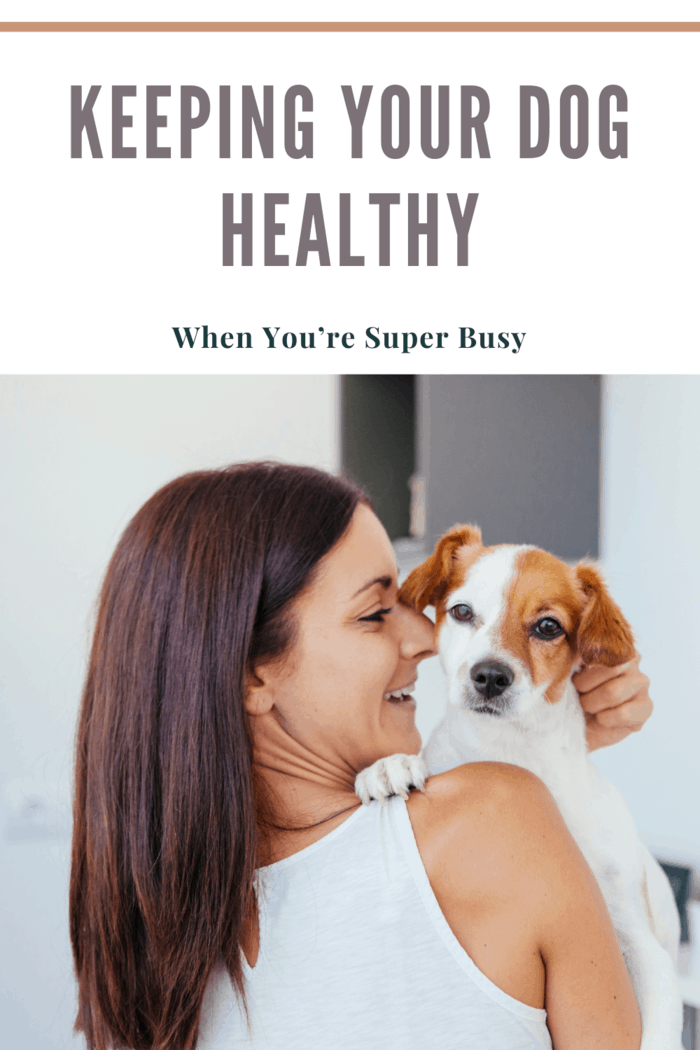 cheerful woman and healthy dog