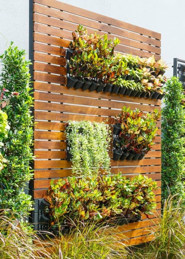 Beautiful vertical garden as a backyard idea to consider