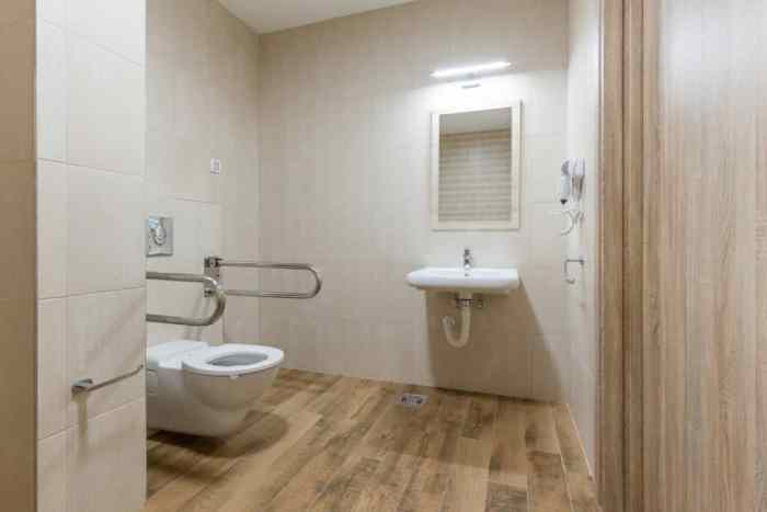 Wheelchair accessible handicapped toilet interior