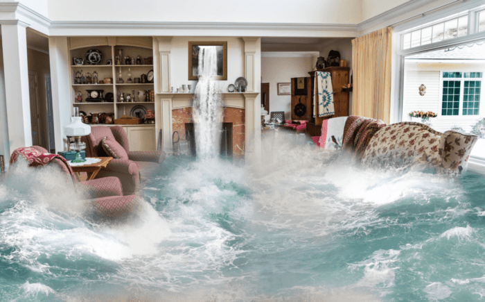 8 Steps to Take After a Flood