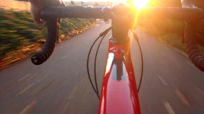 9 Bay Area Bike Trails To Explore This Fall