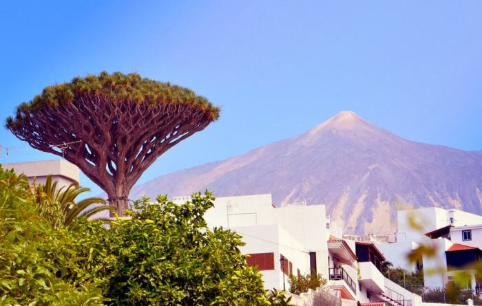 Christmas-in-Tenerife-CLC-World-Mont-Teide-White-christmas