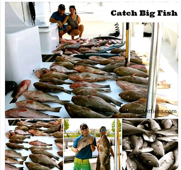 #DiscoverBoating Catch Big Fish