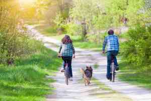 5 Easy Tips for Riding a Bike with Your Dog