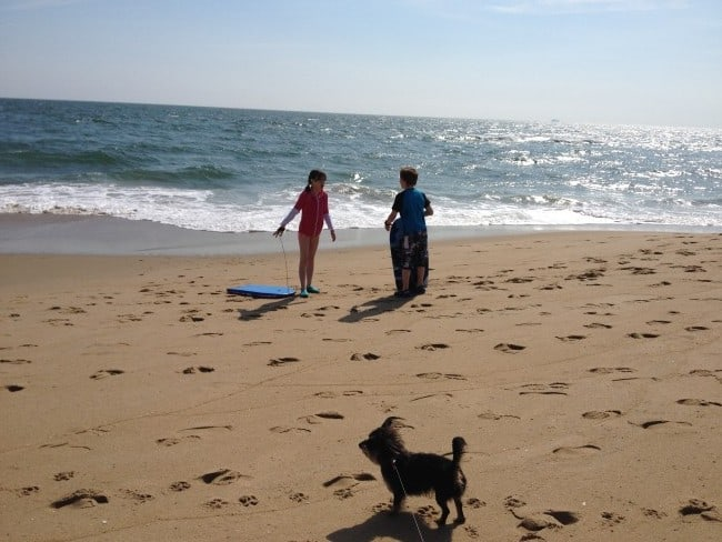bailey mae at the beach