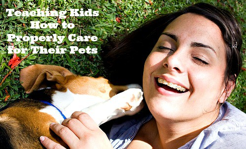 Teaching Kids How to Properly Care for Their Pets