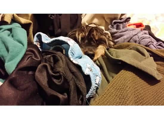 bailey mae in laundry