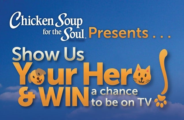 chicken soup for the soul pet hero