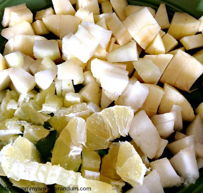 dice apples and pear and cut up lemon