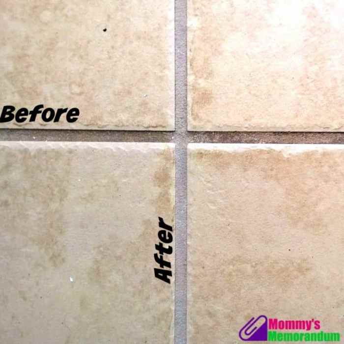 dupray one steam cleaner tackles grout