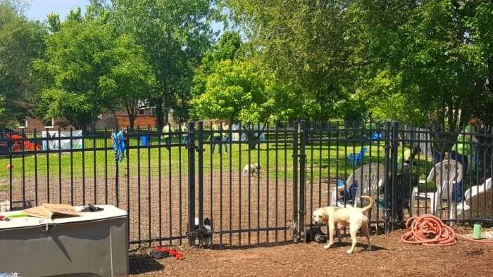 frenchtown dog park beneful dream dog park