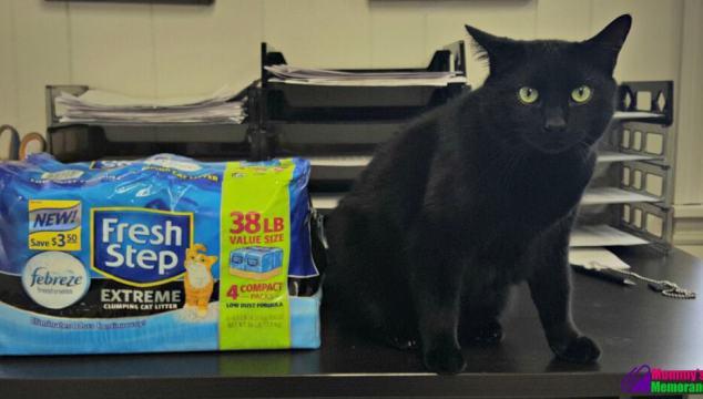 Jinx Tried @FreshStep Compact Pack Cat Litter for a Fresher Box #FreshStepCompactPack #ad