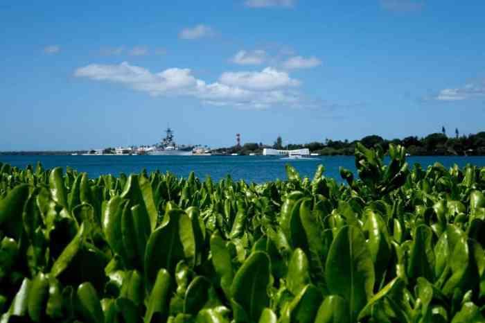 Hawaii Honolulu Pearl Harbor