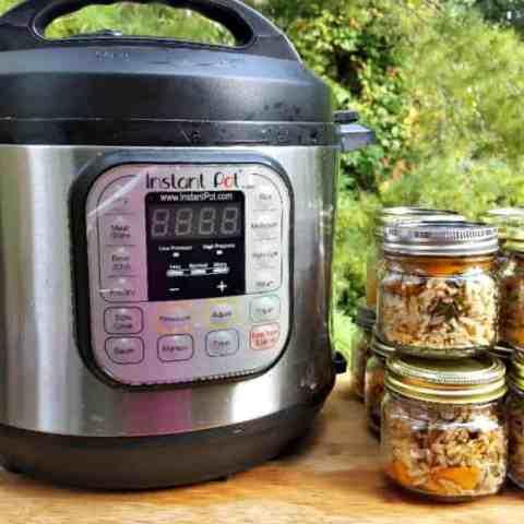 Easy Instant Pot Dog Food Recipe
