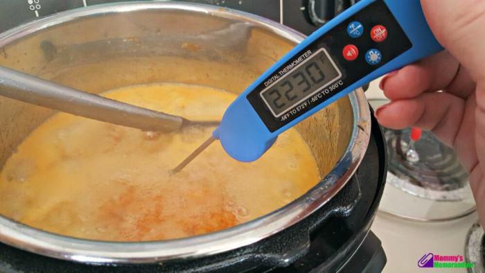 Instant Pot Orange Marmalade Recipe, instant pot orange marmalade temperature