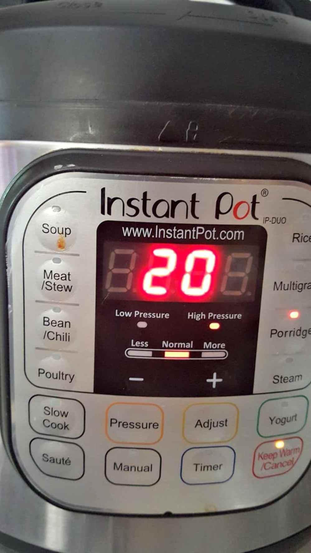 instant pot rice pudding (arroz con leche) porridge setting for 20 minutes