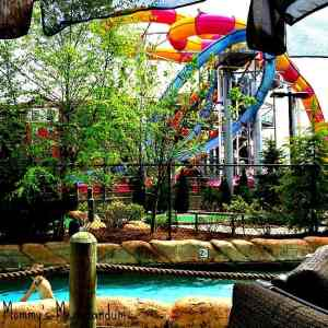 Wilderness at the Smokies Tennessee's Largest Waterpark