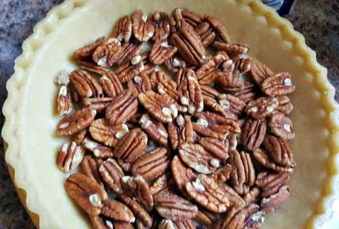 pecan pie pecans in shell