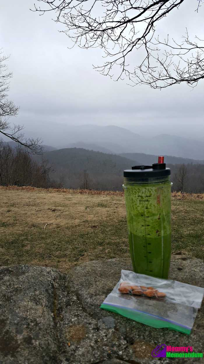 personal trainer food approved kale smoothie with a view