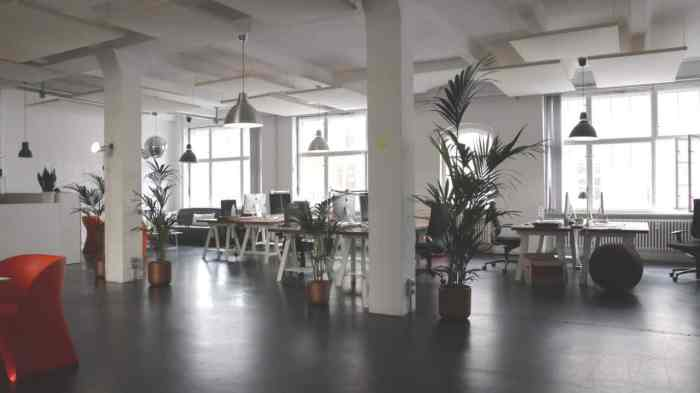 You can also adopt energy-friendly techniques and artificial plants as inexpensive office decor upgrades that will give big returns.