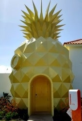 Nickelodeon Punta Cana's One-of-a-Kind Pineapple House