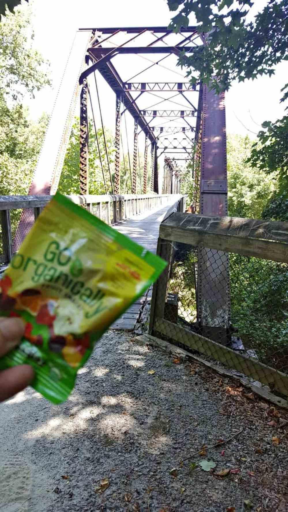 staunton river bridge go organically