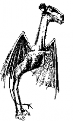 Jersey_Devil