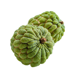 Taiwan Custard Apple