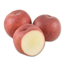 USA White Peach
