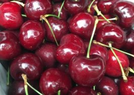 Cherries in Singapore