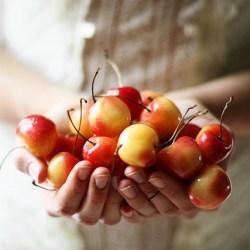 Sweet Rainier Cherries