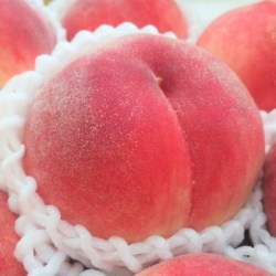 Japanese Peach box