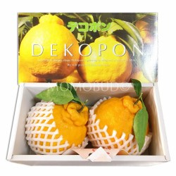 Japanese Depokon Gift Set (2pcs)