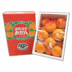 Japanese Gamagori Onshitsu Mikan Gift Box