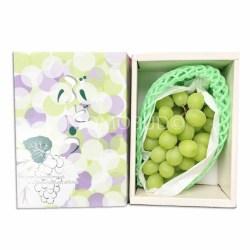 Yamanashi Shine Muscat 800g Gift Box