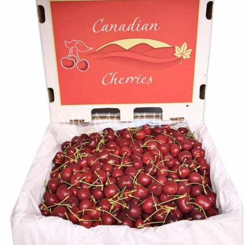 Canadian Lapin Red Cherry Box