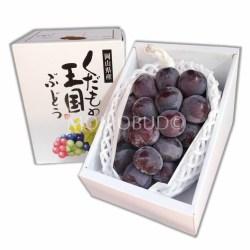 Okayama Pione 700g Gift Box