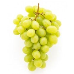 Sweet Globe Green Grapes