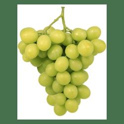 Sugar Crunch Seedless Grapes